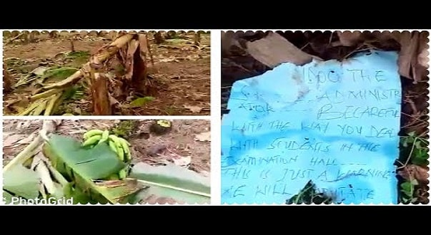 Farm Of Assist. Headmaster Destroyed By Students For Being Strict During WASSCE